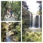 Schöne Wasserfälle bei Kerikeri